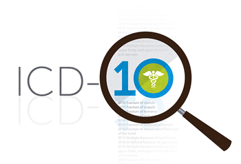 ICD Graphic V1.0 06